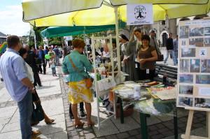 Parafialny Festyn Rodzinny na Rynku