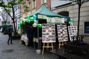 II Festiwal Organizacji Pozarządowych